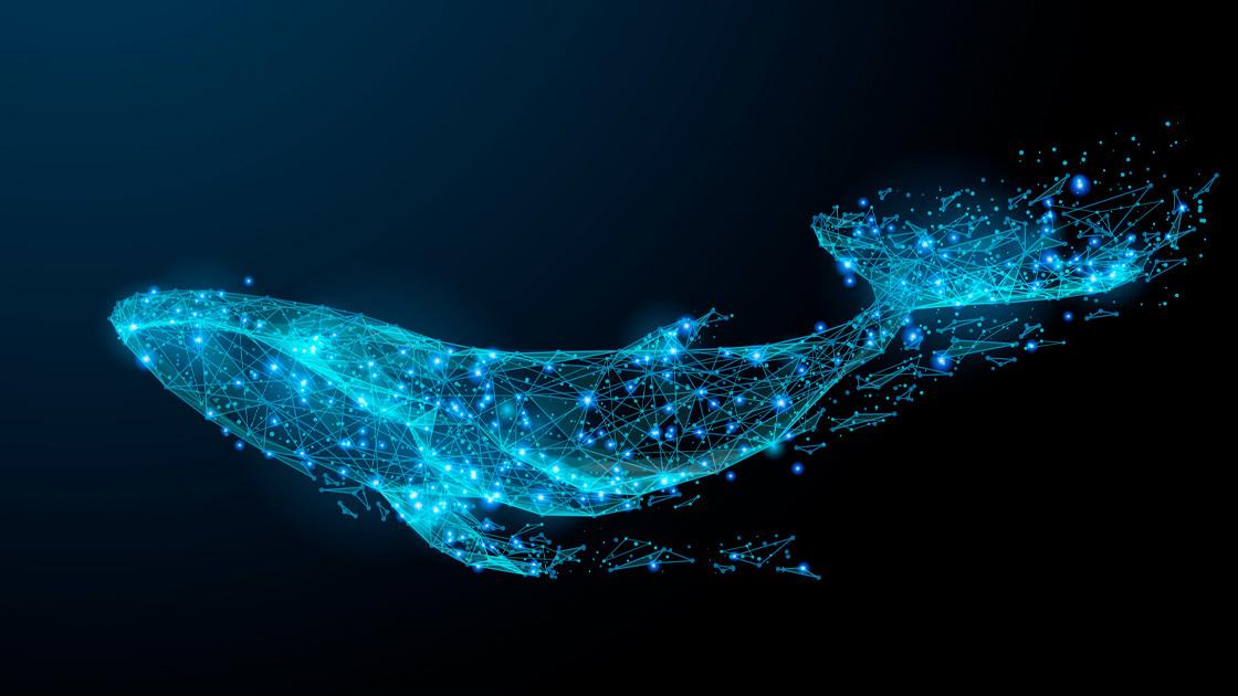 Crypto whales